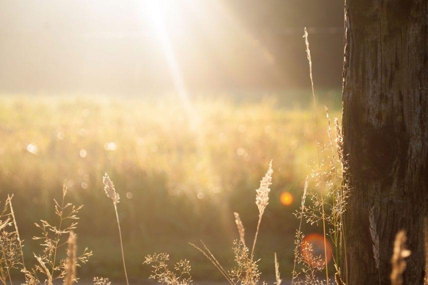 Bringing it to Light: Destigmatizing Bipolar Disorder